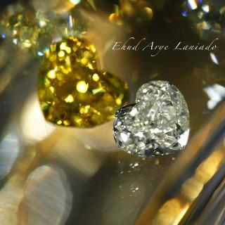 Diamond Portraits - Robert Shipley Sr.