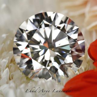 Diamond Profiles: Moshe Schnitzer