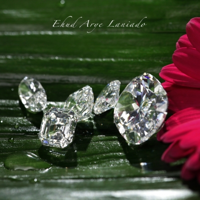 Diamond Portraits: Joseph Goldfinger