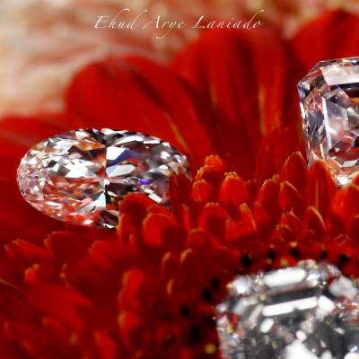 Mercury Polished Diamond Prices: Prices Rebound in January
